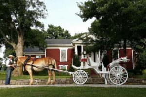 Herd Farms Nursery has a wedding venue on-site in Belvidere, TN